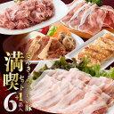 【ふるさと納税】ハンバーグ4個おまけ+お楽しみの品付き さんきょうみらい豚満喫セット3月発送分 豚肉の人気の一品