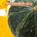 ナチュラルカラー パンプキンパウダー 30g 【HappyPrice100YEN】【北海道産 かぼちゃ 100% 使用 かぼちゃパウダー 野菜パウダー 粉末 食物繊維 豊富 お試し にも】