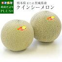 送料無料 熊本県または、茨城県産 クインシーメロン 秀品 3Lサイズ 2.5キロ(2玉入) 赤肉メロン