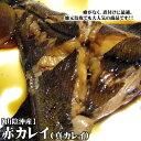 送料無料!大3匹セット【スピード出荷】鳥取県産 赤カレイ(子持ち) 大 3匹セット(合計1.5kg前後)【お刺身・唐揚げ・煮つけ♪】