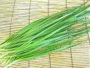 西日本産(愛知、他)】自然農法、または特別栽培ニラ 100g