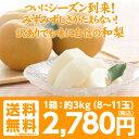 【ギフト対応】【送料無料】【訳あり】福島県産 梨「幸水」「 豊水」「南水」3キロ(8〜11玉)超新鮮朝摘みでお届けいたします!抜群の甘さ、みずみずしさ!甘さ溢れる果汁!梨 訳あり/送料無料