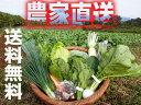 九州佐賀の農家直送野菜セット【送料無料】【常温】【10品詰め合わせ+こだわりの【たまご】