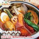 アールティー スープカレー スープ、野菜は別パックタンドリーチキンに野菜ときのこの具だくさんスープカレー, スパイスで体の中から暖まろう♪スープカレー,カレー,通販 【dl_0301fd】