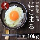 新米【29年産】にこまる 減農薬一等米 10kg(白米 5kg×2) 宮崎県産(産地直送)