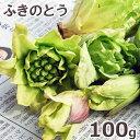 2021年予約 3月上中旬〜出荷予定天然山菜・ふきのとう100g(大小バラ詰め)※送料別(クール便)