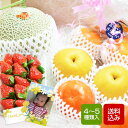 果物フルーツセット 5000 お中元 ギフト
