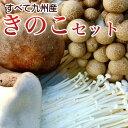 きのこセット 九州産 生しいたけ エリンギ しめじ えのき など4種類6袋入のキノコセットです。