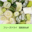 乾燥野菜 フリーズドライ国産長ねぎ(10g) ●賞味期限:2019.3.17  長ネギ アスザックフーズ