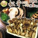 """【送料無料】中国産 """"松茸"""" 約1kg 訳あり 開き方・大きさおまかせ【予約 7月〜8月以降】"""