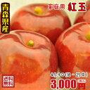 青森りんご☆送料無料☆家庭用紅玉4.5〜5キロ18〜25玉 発送は10月17日頃から