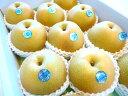 【送料無料】ジューシーで美味しい梨 豊水梨 8〜9玉(約2.3〜2.5kg)【和歌山産・徳島産・三重産・長野産】