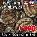 淡路島産天然活あわび60g〜70gサイズ1個【楽ギフ_のし】(アワビ・鮑・あわび)