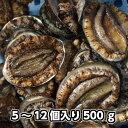 淡路島産天然活あわび5個〜12個で合計約500g【楽ギフ_のし】(アワビ・鮑・あわび)