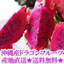 【送料無料】沖縄産ドラゴンフルーツ(レッドピタヤ・レッドドラゴンフルーツ)2.0kg前後(4〜8個)ギフト(贈答)や沖縄土産で人気の果物(くだもの・沖縄食材) 送料無料市場 お試し スイーツ 販売(楽天通販)