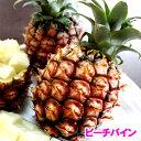 沖縄産ピーチパイン(パイナップル) 安心保証付き 送料無料お徳用5kgサイズ(4〜10個)自社管理農園から直送だから安心保証付き沖縄産フルーツ パイナップルの通販はお任せ下さい ギフト 母の月 母の日 父の日