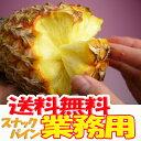 業務用 沖縄産スナックパイン(パイナップル)約20.0kg(16〜30個) 送料無料自社管理農園から直送だから安心保証付き沖縄産フルーツ パイナップルの通販はお任せ下さい ギフト