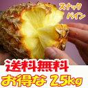 沖縄産スナックパイン(パイナップル)約2.5kg送料無料 安心保証付き★自社管理農園から直送だから安心保証付き沖縄産フルーツ パイナップルの通販はお任せ下さい ギフト