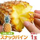 沖縄産スナックパイン(パイナップル)お試し1玉 送料無料自社栽培だから安心保証付パイナップル(沖縄産果物/南国フルーツ)専門店 ギフト 母の月 母の日 父の日