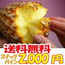 沖縄産スナックパイン(パイナップル)お試し1玉 送料無料自社栽培だから安心保証付パイナップル(沖縄産果物/南国フルーツ)専門店 ギフト