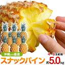 スナックパイン 沖縄産 パイナップル 約5.0kg 送料無料自社管理農園から直送だから安心保証付き沖縄産フルーツ パイナップル 母の日の通販はお任せ下さい ギフト 母の月 父の日