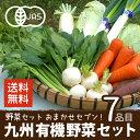 野菜セット 有機野菜おまかせセブン 九州野菜 鹿児島県 有機栽培 JAS認証 送料無料 7品目 ヘルシー テイスティ