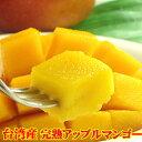 マンゴー 台湾マンゴー約2.5kg前後 アップルマンゴー (7月下旬頃入荷予定) 送料無料 予約商品 直輸入 果物 フルーツ