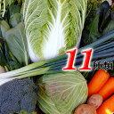 とれたて野菜 11種類セット詰め合わせ 高知産 レシピつき 追加機能つき 内容お知らせ機能も 送料無料 [Qv11]