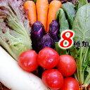 とれたて野菜 8種類セット詰め合わせ 高知産 レシピ・追加機能付き 送料無料 [Qv10] 詰め合わせ クール便 新鮮 葉物 根菜 香味 定番野菜 翌日発送も可 土佐 四国 西日本 野菜ジュース