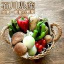 石川県野菜セット 加賀・金沢・能登おまかせ野菜 夏のAセット (毎週木曜日発送)