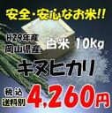H29年産 岡山県産 キヌヒカリ 白米 10kg