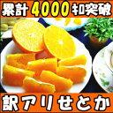 大人へ捧げる 最高級柑橘!みかんの大トロ和歌山 有田 生勇農園指 せとか5kg家庭用 せとか 訳あり せとか 5kg せとか 訳あり 5kg せとか 家庭用 せとか みかん せとか わけあり せとか 楽天 みかん せとか せとか 送料無料