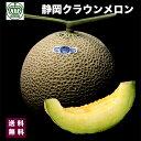 高級ブランド 静岡県 クラウン メロン 白クラス 1箱 1個入り 約1.2kg 3500円 送料無料 お中元 ギフト