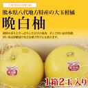 【 送料無料 】熊本産 晩白柚(バンペイユ)2玉入り 4kg前後 【 九州 熊本 みかん 柑橘 ザボン 大玉 皮 砂糖漬 御歳暮 ギフト 】