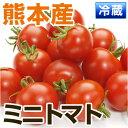 熊本産 ミニトマト 約150g 【 野菜セット同梱で送料無料 九州 熊本 野菜 とまと ミニ プチ トマト 実 】