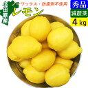 【送料無料】減農薬 国産レモン 4kg 小田原産 特別栽培・有機肥料