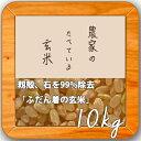 米 10kg 送料無料 玄米食 調整済 【29年産 農家の食べているおいしい玄米10kg】オリジナル 10キロ