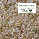 米 10kg 玄米食 調整済 2年産 農家の食べているおいしい玄米10kg オリジナル【米10kg】