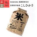新米 特別栽培米 丹後産 コシヒカリ 米 10kg 送料無料 令和2年産お米 分つき米 玄米