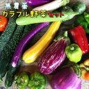 【ふるさと納税】無農薬 カラフル野菜セット ひばり農園《10月より順次発送予定/予約受付中》