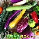 【ふるさと納税】ひばり農園の無農薬ワクワク野菜セット お楽しみ 野菜 詰め合わせ 7〜10品