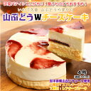 【ふるさと納税】ギフト ご自宅用 お祝い【山ぶどうWチーズケーキ(4号:直径12cm)】
