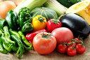 【ふるさと納税】FY19-174 山形の夏野菜セット