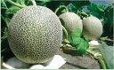 【ふるさと納税】山形県河北町産タカミメロン約5.0kg(4玉〜5玉)