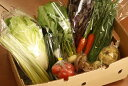 【ふるさと納税】【産地直送】採りたて野菜セット