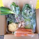 【ふるさと納税】旬の佐渡 農産品BOX 春 【野菜・野菜セット】 お届け:2019年4月10日〜6月30日まで