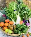 【ふるさと納税】産地直送!新鮮とれたて季節の野菜&フルーツセット/季節野菜 採れたて 安心 奈良県