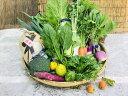 【ふるさと納税】産地直送!新鮮とれたて旬野菜&ひのひかり5kgセット◆