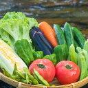 【ふるさと納税】SGN13 阿波の国海陽町 旬のお野菜詰め合わせセット4-5名様以上向け