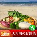【ふるさと納税】【定期便】お野菜定期便 年6回コース